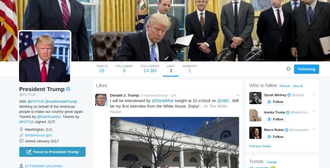 trump-likes